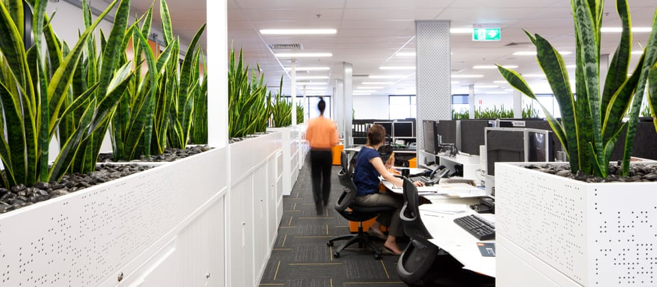 Boart Longyear Adelaide, Adelaide, South Australia - A Workplace project for Boart Longyear and Australand by Hames Sharley