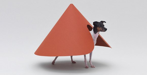 Pointed T by HARA DESIGN INSTITUTE for JAPANESE TERRIER