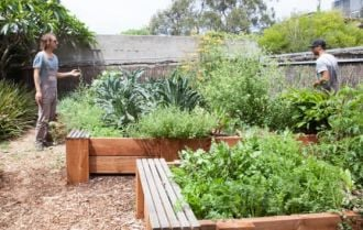 Feature image for the article 'Digging it: How important are city farms in modern urban design?' by Kath Walters